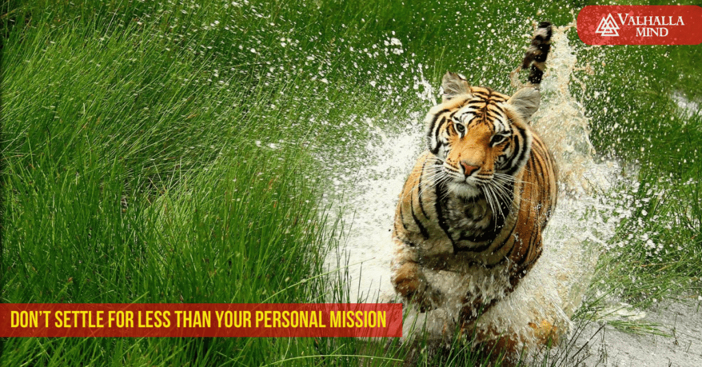 Don't Settle For Less Than Your Personal Mission