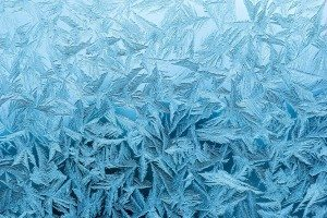 The Secret Language of Nature - snowflake - personality trait