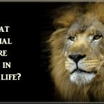 past life animal