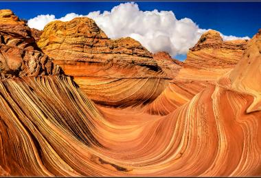 75 Stunning Photomicrography